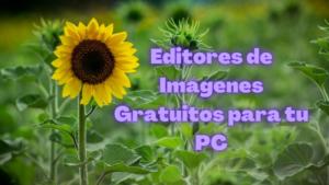 Editores de Im谩genes Gratis para PC